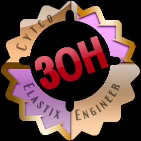 30h-logo2